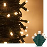 Warm White LED Christmas Mini String Light Set, 50 5mm Lights, Indoor / Outdoor Christmas Light Decorations, 120V UL Certified, Green Wire