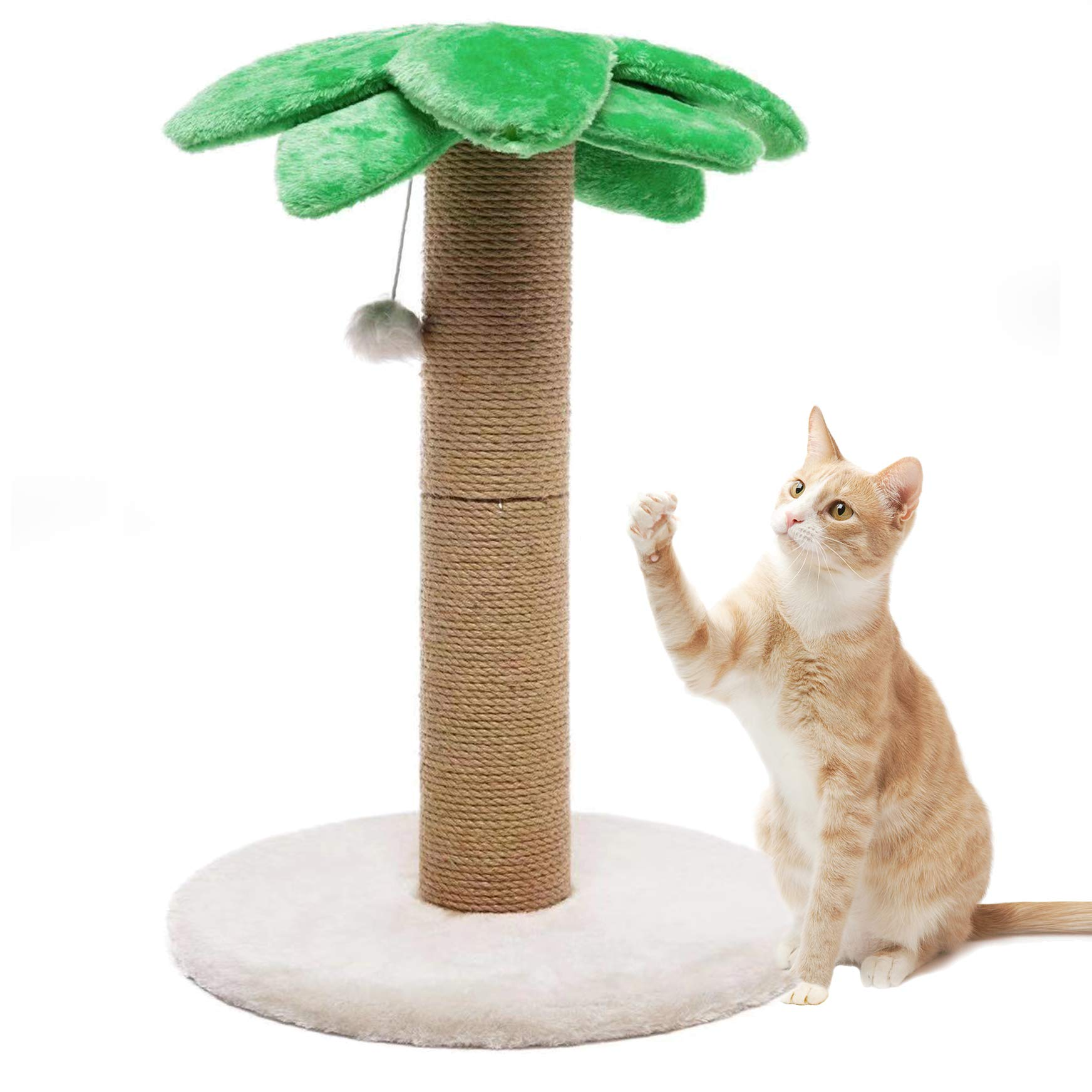 Small Medium Cat Scratching Post Kitty Coconut Tree-Cat Scratch Post for Cats and Kittens - Plush and Sisal Scratch Pole Cat Scratcher 23in by Luckitty
