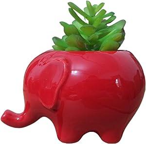 Everyday Better Life Cute Cartoon Animal Elephant Ceramic Succulent Cactus Flower Pot/Plant Pots/Planter/Container for Home Garden Office Desktop Decoration (Red)