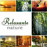 Relaxation – sons de la nature, méditation de yoga, musique new age, sommeil profond, massage et spa, musique reiki, endormir, concentration, Ayurveda