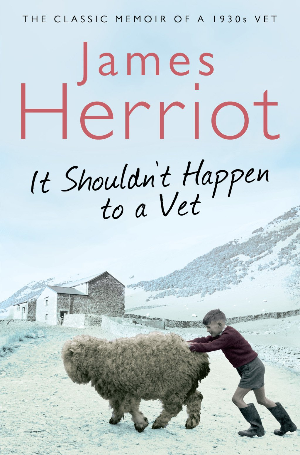 It Shouldn't Happen To A Vet  The Classic Memoir Of A 1930s Vet  Pan 70th Anniversary   English Edition