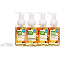 4-Pack CleanWell Natural Antibacterial 9.5Oz Foaming Hand Soap