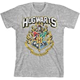 Harry Potter Hogwarts Distressed Boys Youth T-Shirt Licensed