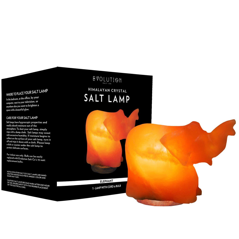 Amazon.com: Evolution Salt 609722585903 Evolution Salt Crystal ...