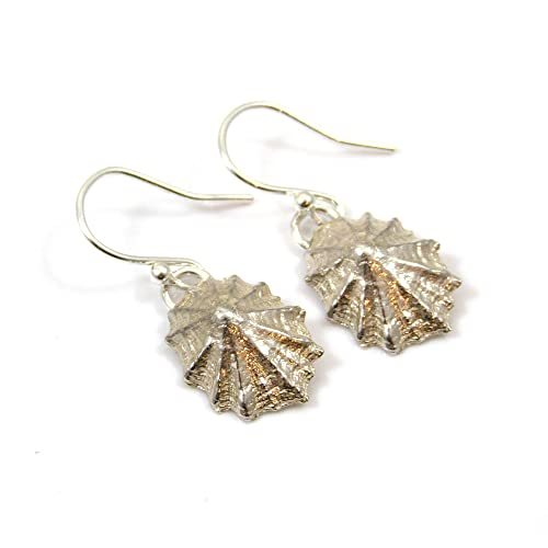25bec1784 Sterling Silver Limpet Shell Drop Earrings: Amazon.co.uk: Handmade