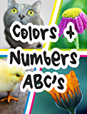 Colors + Numbers & ABC's: English for Young Learners