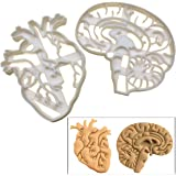 SET of 2 cookie cutters (Anatomical Heart & Anatomical Brain cookie cutters), 2 pcs, Ideal for Medical themed party