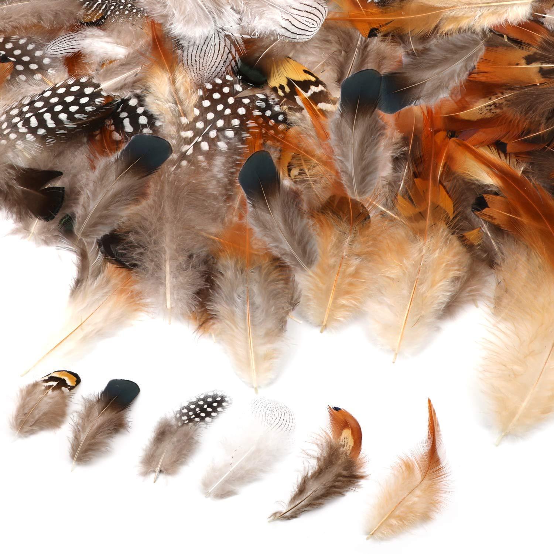 Dreamcatcher oder Karneval Dekoration DIY Kunstwerk 200pcs H/üte WENTS Braun Federn Indianer Federn basteln 5-8cm zum Basteln f/ür K/östum
