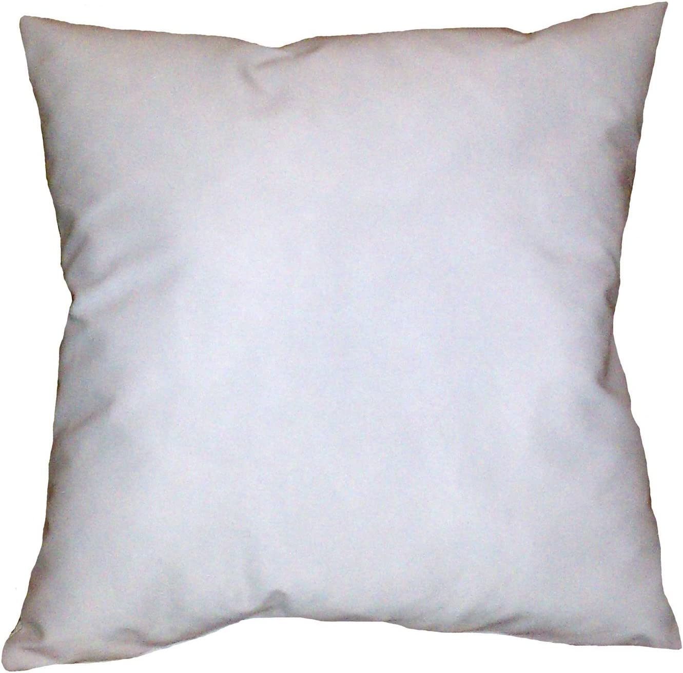 Reynosohomedecor 9x9 Square Pillow Insert Form Home Kitchen