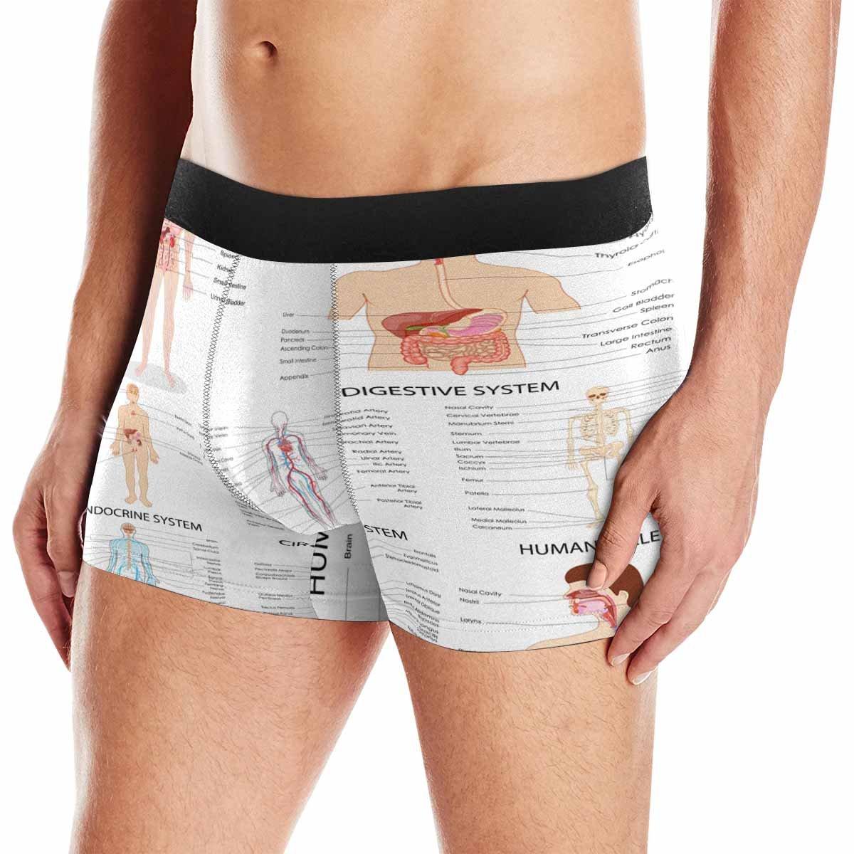 INTERESTPRINT Custom Mens Boxer Briefs Complete Chartdifferent Human Organ System XS-3XL