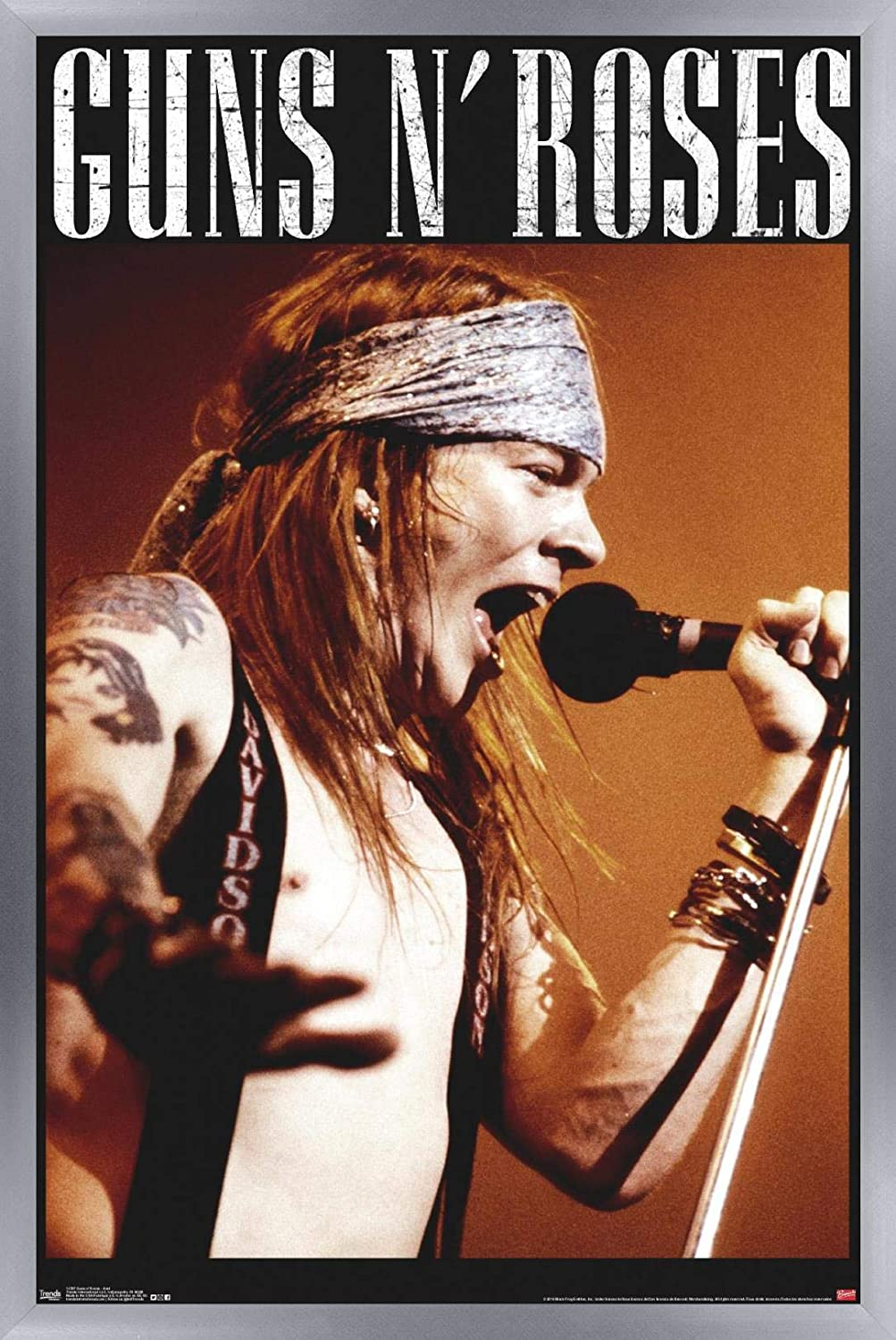 Guns N Roses Use Your Illusion II Giclee Canvas Album Cover Picture Art