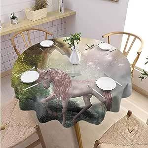 GROGON Overlays Round Tablecloth Hummingbirds Unicorn Gold ...