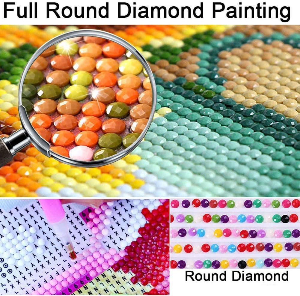 YLucy 5D Diamond Painting Kits,Round Full Drill Resin Crystal Rhinestone Embroidery Art Craft-Bird of Paradise Flower