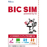BIC SIMキャンペーン