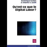 Qu'est-ce que le digital labor ?: Les enjeux de la production de valeur sur Internet et la qualification des usages numériques ordinaires comme travail. (Etudes & controverses) (French Edition)