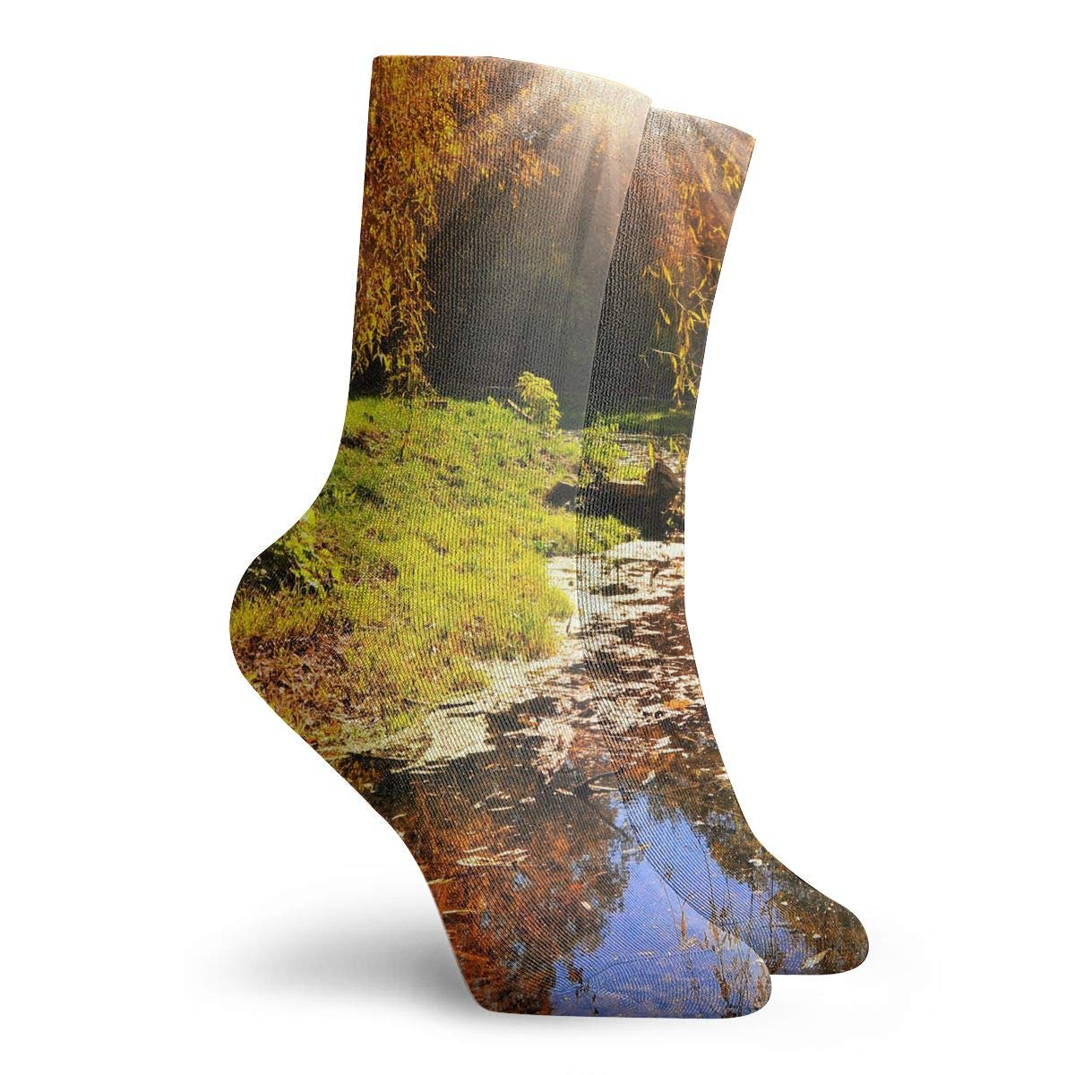 WEEDKEYCAT Nature Sun Autumn Tree Landscape Adult Short Socks Cotton Gym Socks for Mens Womens Yoga Hiking Cycling Running Soccer Sports