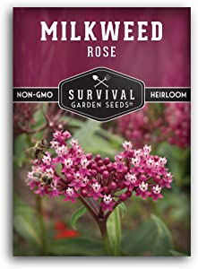 Survival Garden Seeds - Rose Milkweed Seeds for Planting - Packet with Instructions to Plant and Grow Your Own Home Garden - Non-GMO Heirloom Seeds Grown in USA