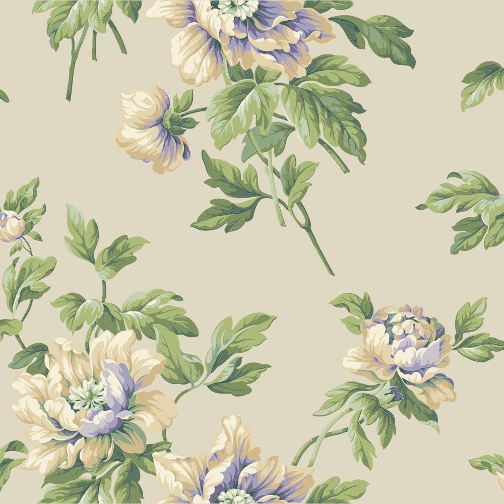 Amazon Com York Wallcoverings Ba4611 Casabella Ii Document Floral
