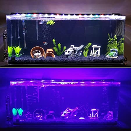 Main Luz LED, iluminación Acuario Acuario Blanco Azul Rojo Verde luz 7,5 W/16 W/22 W/31 W con ajustable Soporte para 30 cm de 50 cm/50 cm de 70 cm/70 ...