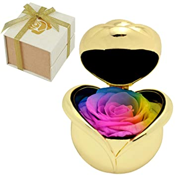 Amazon.com: Rosa roja, rosas preservadas a mano, exquisitas ...