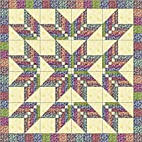 Easy Quilt Kit Floral Explosion