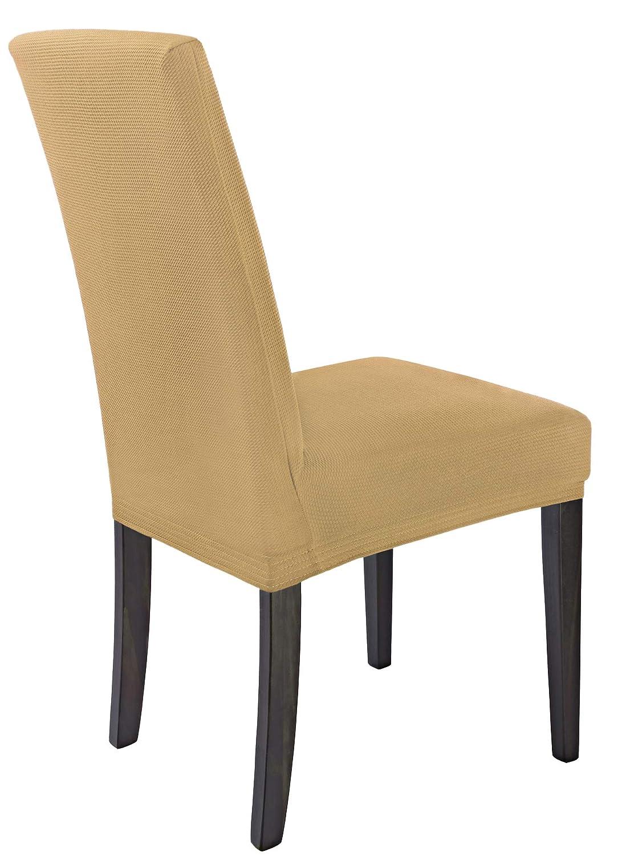 SCHEFFLER-Home MIA Microfibra 2 Fundas de sillas, Estirable Cubiertas, extraíble Funda con Banda elástica, Beige