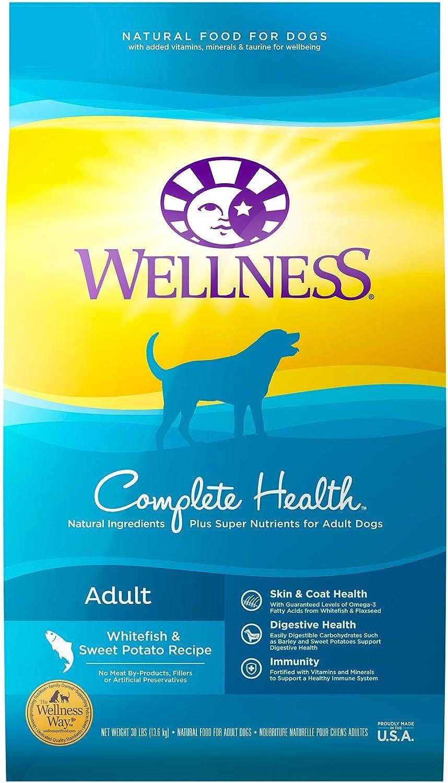 Wellness Whitefish and Sweet Potato Dry Dog Food