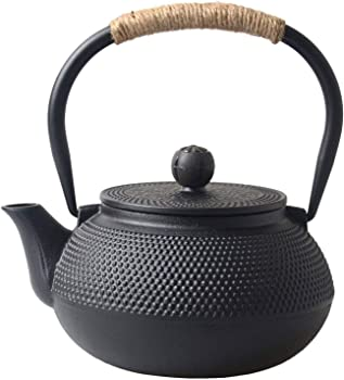 Hwagui Best Japanese Cast Iron Teapot