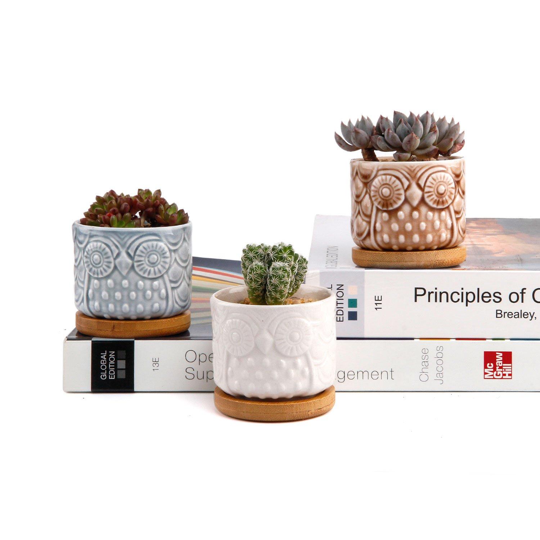 Fioriere di Cactus Contenitori Vasi di Fiori Decorativo del Desktop Davanzale Bonsai ComSaf Vaso per Pianta Grassa Vaso di Piante con Vassoio di bamb/ù Pancromatico 6.6CM Ceramica Gufo Set di 6