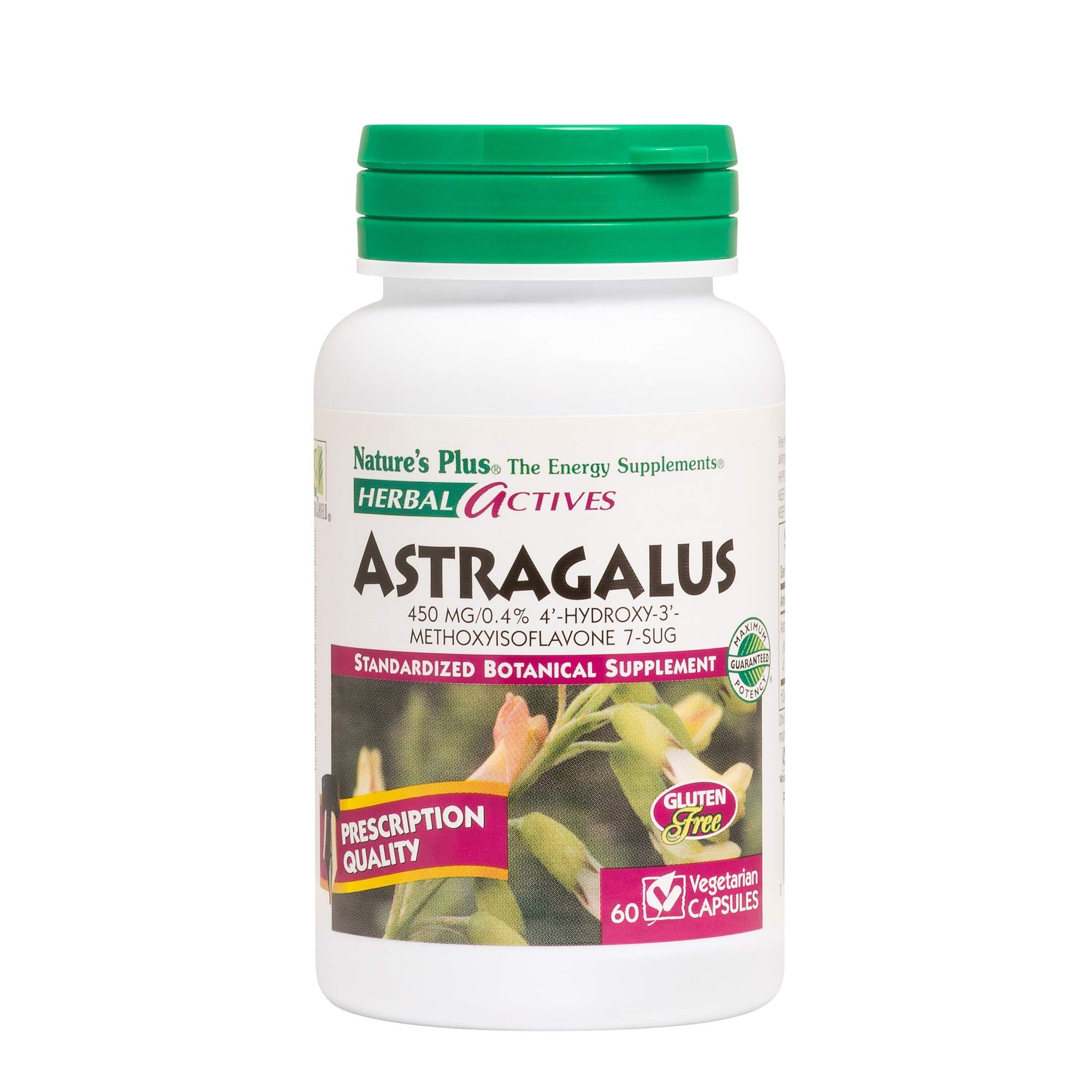 Natures Plus Herbal Actives Astragalus - 450 mg, 60 Vegan Capsules - Standardized Herbal Supplement, Supports Heart & Immune Health - Vegetarian, Gluten Free - 60 Servings