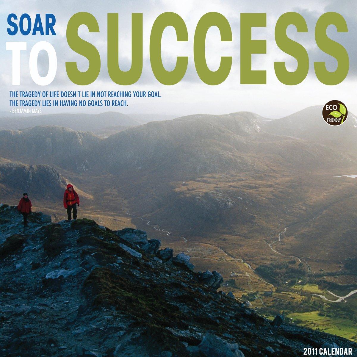 Download Soar to Success 2011 Mini Calendar pdf