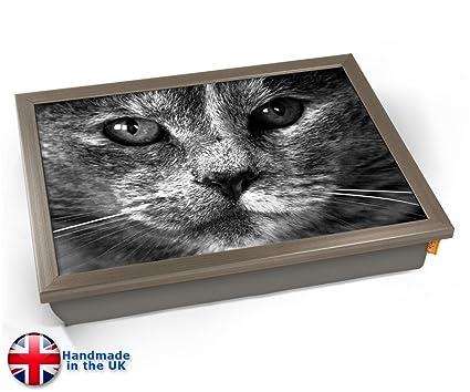KICO Bandeja para gatos, color gris