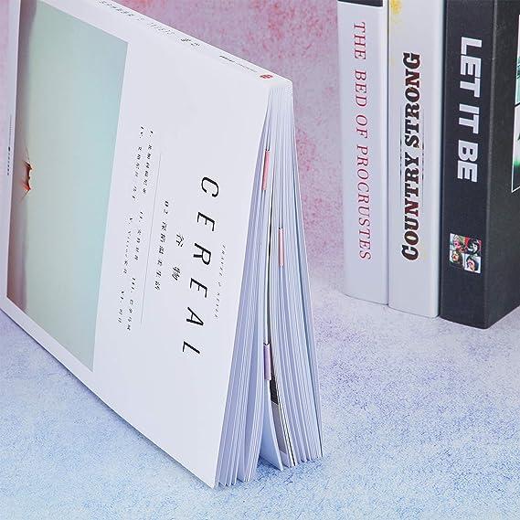 10 St/ücke Magnetische Lesezeichen Magnet Seiten Markierungen Verschiedene Buch Markierungen f/ür Sch/üler zum Lesen Obst Stil, 2,3 x 0,8 Zoll