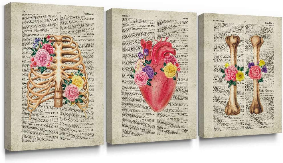 SUMGAR Skull Canvas Wall Art Anatomy Flowery Heart Pictures Vintage Dictionary Page Prints Set of 3,12x16 inch