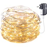Minetom 100 LED Fairy Lights 33FT Firefly String Lights Waterproof Silver Wire UL Adaptor Included, Firefly Lights for Indoor Outdoor Christmas Decorative Patio Wedding, Warm White