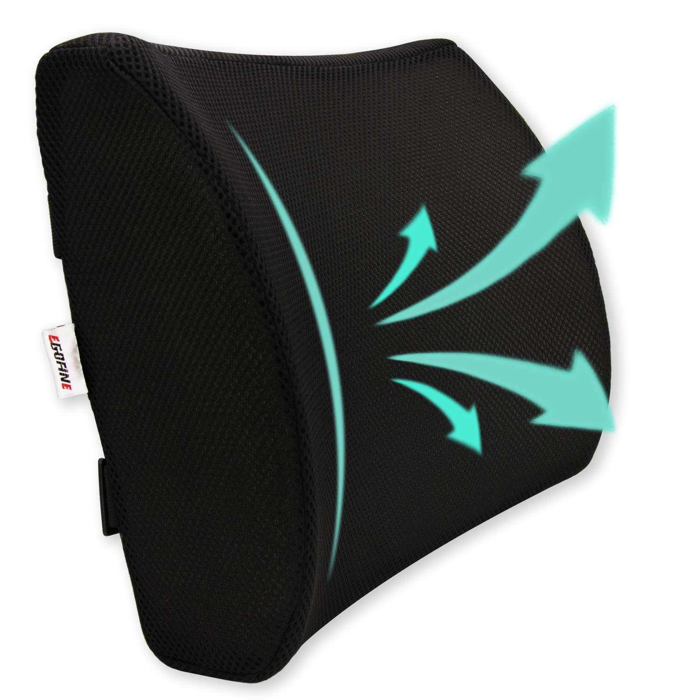 Egofine Memory Foam Lumbar Support Pillow Back Support Cushion 3D Soft Firm Balanced Mesh Cover Office/Computer Chair,Car Seat,Black