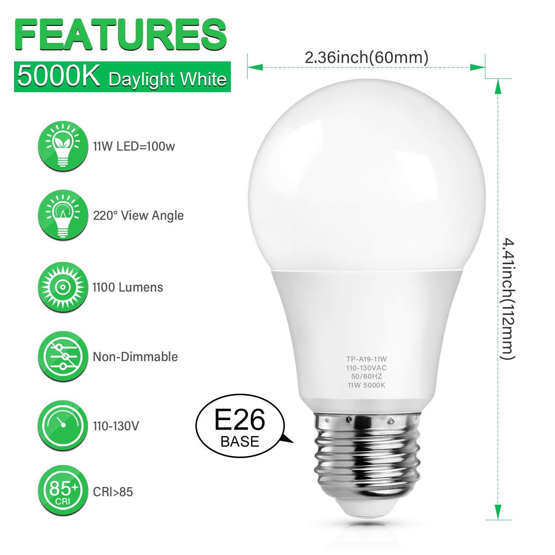 A19 LED Light Bulbs No Flicker Pack of 12/ 100 Watt Equivalent LED Bulbs 1100 Lumens Non-Dimmable 3000K Soft White CRI 85+ 25000+ Hours Lifespan Standard E26 Medium Screw Base