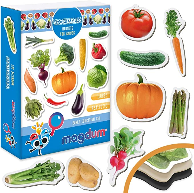 Kitchen Magnet FRUITs Zoo Animal 110 pcs Vegetables Magnetic EDUcational LEARNing Toy Baby 3 Year Old Magdum 5 SETs PHOTO Farm Transport Fridge Magnets BIRTHDAY SET Kid Toddler