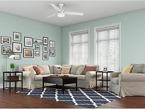 Hunter Fan Company 59456 Ceiling Fan