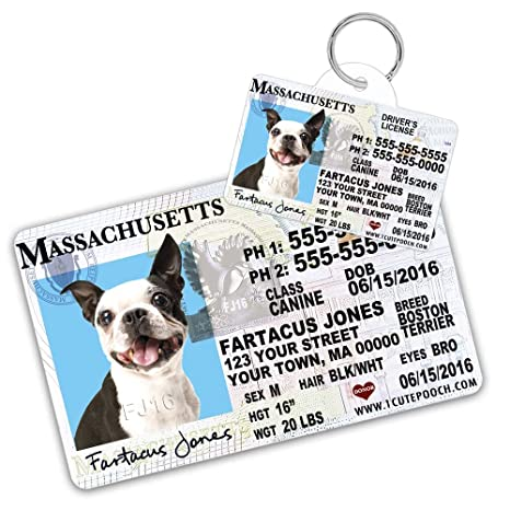 Pet Supplies Massachusetts Driver License Custom Dog Tag For Pets