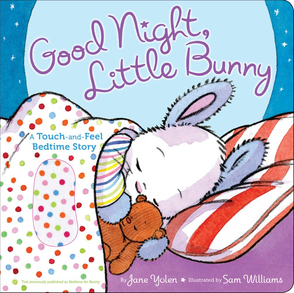 Download Good Night, Little Bunny: A Touch-and-Feel Bedtime Story ebook