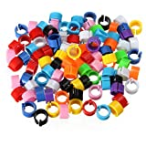 100 Bird Leg Bands 8mm Pigeon Chicks Bantam Poultry Rings Multicolor by PetintheGarden