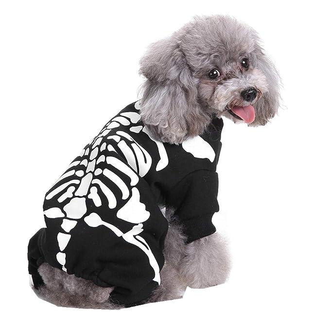 Ropa para Mascotas,Dragon868 Cool Halloween Fiesta Perros Mascotas Traje de Cosplay: Amazon.es: Ropa y accesorios