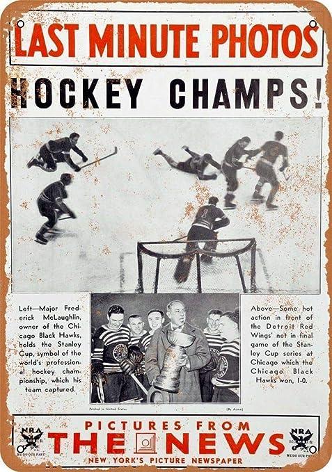HALEY GAINES Hockey Champs Placa Cartel Póster de Pared ...