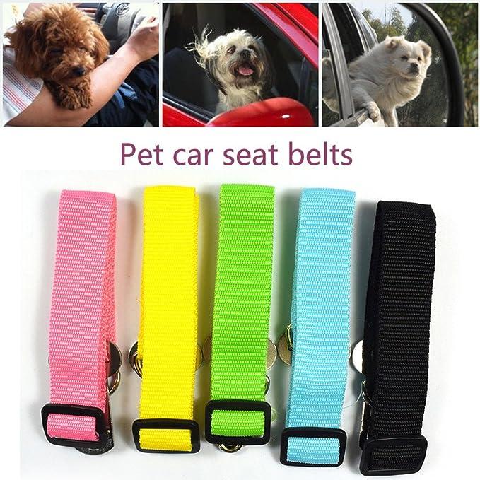 OGGID Cinturón de Seguridad para Perros Ajustable para Mascota ...
