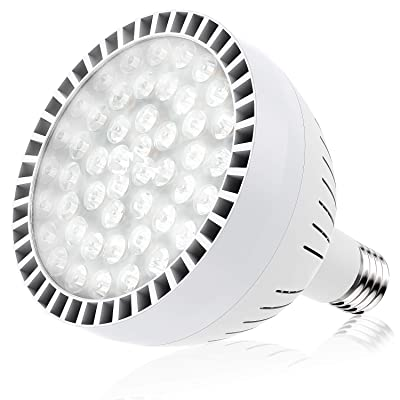 Bonbo LED Pool Bulb White Light