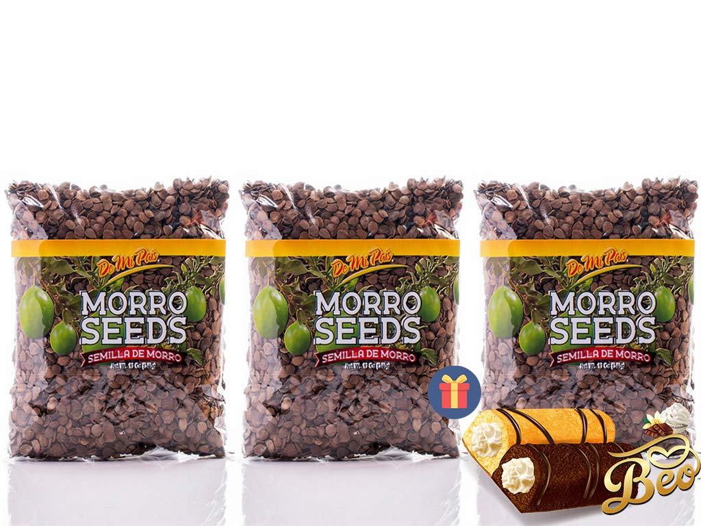 Morro Seeds / Semilla de Morro 6-pack - 1 FREE BEO GIFT