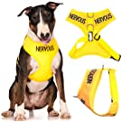 NERVOUS (Give Me Space) Yellow Colour Coded Non-Pull Front and Back D Ring Padded and Waterproof Vest Dog Harness PREVENTS Accidents By Warning Others Of Your Dog In Advance (L)