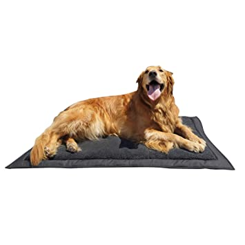 Travel Dog Bed >> Lightspeed Outdoors Self Inflating Fleece Top Cover Travel Dog Bed Kennel Bed 32 Inch By 42 Inch