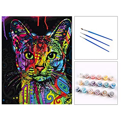 "baoshihua DIY Oil Painting, Paint by Number Kits for Kids - Hi Kitty 16""x20"": Toys & Games"